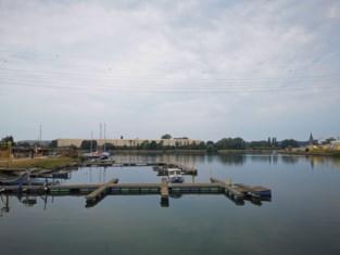 Giftige blauwalgen woekeren in Zeekanaal en insteekdok, burgemeester verbiedt oppompen van water