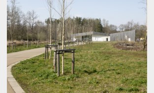 """Telecomoperatoren willen zendmast aan De Averegten: """"Te weinig ontvangst in buurt van groendomein"""""""