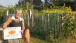 """Tuinier schoolmoestuintje ontroostbaar na opmerkelijke diefstal: """"Ik had wel kunnen wenen"""""""
