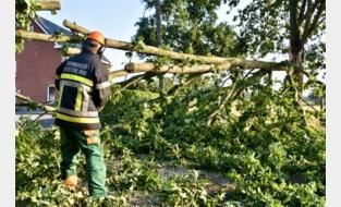 """Hevig onweer trekt over Bornem: """"Plots werd alles grijs rondom ons, we zagen amper nog een hand voor ogen"""""""