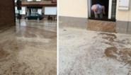 Hittegolf, opvangbekken droog, en toch straten vol modder