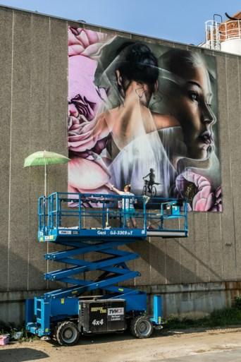 Fabrieksgebouw waar moord Julie Van Espen plaatsvond, krijgt eerbetoon in street art