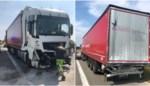 Twee vrachtwagens van zelfde firma rijden op elkaar in