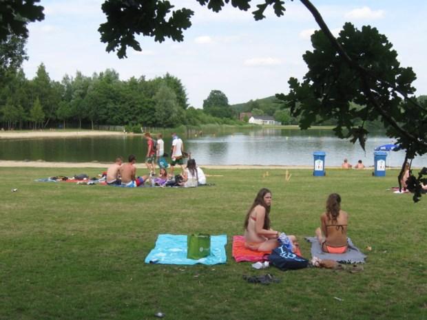 Tijdelijk zwemverbod aan De Plas