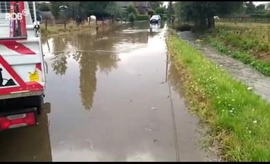 Hevige regen trekt door Vlaanderen en zorgt voor wateroverlast