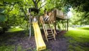 Kinderparadijs: met de poppen spelen in de boomhut terwijl mama en papa luieren in de hangmat