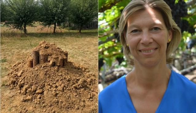 Burgemeester haalt wilde natuur naar haar tuin met broedhoop voor vliegend hert