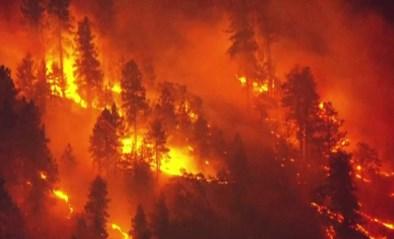 Vuurzee ten noorden van Los Angeles, honderden mensen geëvacueerd