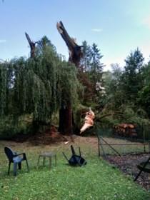 Onweer richt in Limburg geen zware schade aan