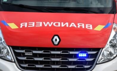 Kind uit kanaal gered in Anderlecht: jongen overleden