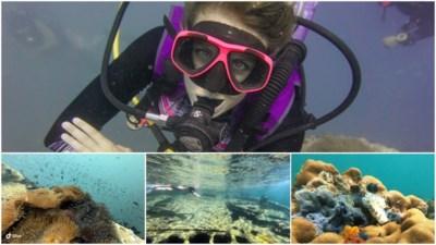 """Vlaamse Shelley (30) reist de wereld rond als duikinstructeur: """"Pas als ik alles gezien heb, kom ik terug"""""""