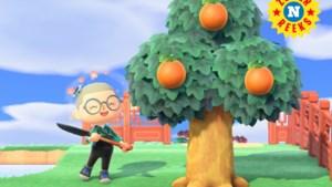 """Tijdreizen en valsspelen in Animal Crossing: """"Bro, jij doet het toch natuurlijk?"""""""