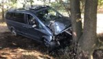 Monovolume crasht tegen boom in Geel