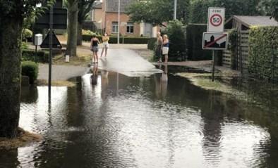 Na de hitte, de overvloed aan water: Vlaanderen kreeg bakken regen over zich
