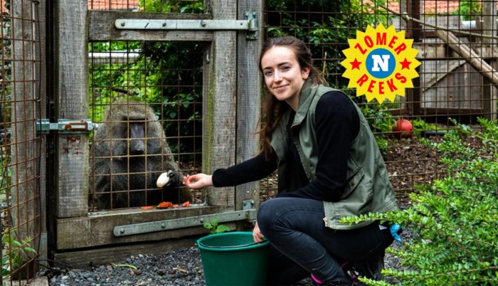 Het verhaal van baviaan Robert, die als kleine aap pintjes moest drinken in een Vlaams café