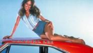 Haar jeansbroekje bleef bekender dan zijzelf, maar na jaren in de schaduw plukt 'Daisy Duke' nog steeds de vruchten van die ene rol