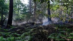 60-tal obussen aangetroffen in Zoniënwoud