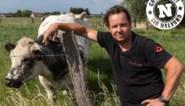 """Groeten vanuit de 'Vlaamse velden' in Langemark-Poelkapelle: """"Hier zoek ik naar oorlogsprojectielen"""""""