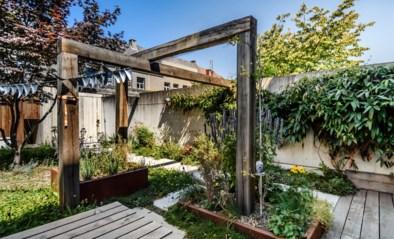 Een groene tuin voor niet-groene vingers: zo gingen Degi en Griet aan de slag