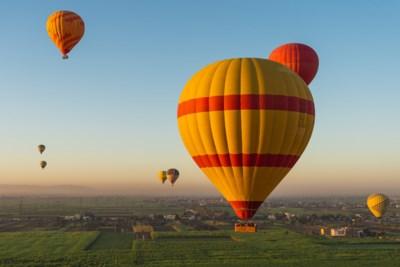 Hoe we de luchtballon te danken hebben aan een heldhaftig schaap, een eend en een haan