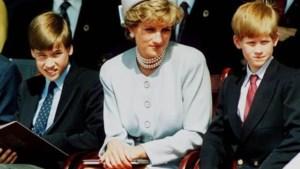 Prins William en Harry brengen samen statement uit: standbeeld voor Diana komt er volgend jaar
