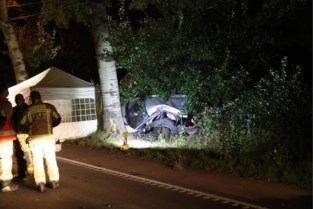 Man (55) overleden na klap tegen boom in Wommelgem