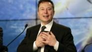 Elon Musk onthult… varken met een ingeplante computerchip
