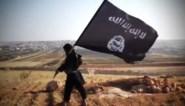 Hoogste ISIS-verantwoordelijke in Turkije opgepakt
