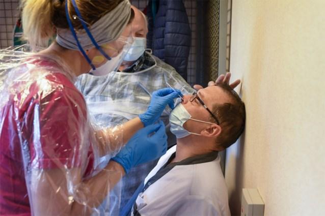 Zwitserse farmareus lanceert snelle coronatest: resultaat in een kwartiertje bekend