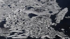 Nooit minder ijs in Beringzee in laatste 5.500 jaar