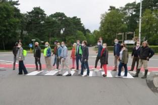 """CD&V en Groen rollen het zebrapad uit: """"Je geraakt Turnhoutsebaan gewoon niet veilig over"""""""