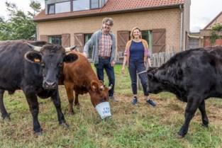 """Binnenkijken bij autismevriendelijke logies: """"Geen nood, Tanja de koe is heel aaibaar"""""""