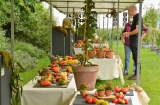Tomatenfestival trekt 800 bezoekers
