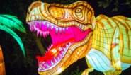 Na Zoo Antwerpen krijgt ook Planckendael eigen lichtfestival