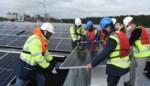 """Eerste drijvend zonnepark is tien voetbalvelden groot: """"20% van geproduceerde energie komt op het net"""""""