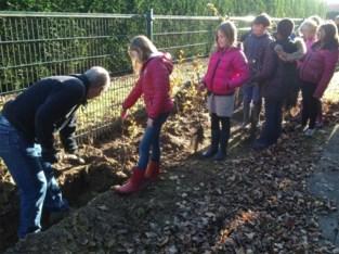 Affligem neemt deel aan samenaankoop 'Behaag je tuin' met streekeigen planten