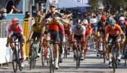 """Tim Merlier heeft eerste zege in Worldtour beet na indrukwekkende sprint in Tirreno-Adriatico: """"Serieus afgezien"""""""