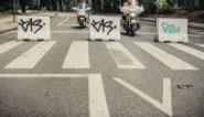 Extinction Rebellion houdt protestactie aan Ter Kamerenbos