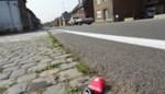 AWV maakt Oudenaardsesteenweg proper maar vraagt hulp van gemeente en burgers