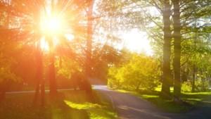 Daar is de nazomer: zonnige start van de week met temperaturen tot 32 graden, code geel voor bepaalde delen van het land