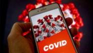 """Apple loopt Belgische corona-app voor de voeten: """"Elke grapjas kan paniek zaaien"""""""