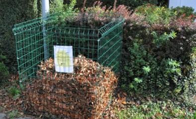 Stad zoekt bladkorfpeters en -meters<BR />