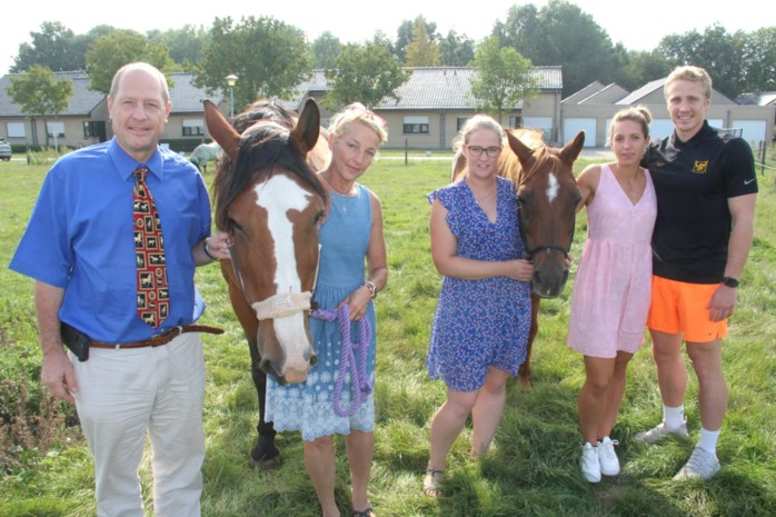 """Familie overstelpt met klachten nadat paardenkadaver te lang moest blijven liggen: """"De lijkgeur was ondraaglijk"""""""