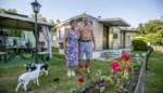 Nieuwe vakantietrend? Kempense campings zien stormloop op staanplaatsen