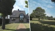 BINNENKIJKEN. Deze villa met gigantische tuin biedt oase van rust, maar daar staat stevig prijskaartje tegenover