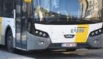 Slechts 13% Kempense bushaltes toegankelijk voor rolstoelen (en in Herenthout geen één)