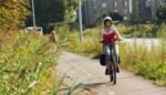 Bomen moeten in de toekomst rijweg scheiden van 'junglefietspad' op Ekersesteenweg