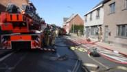 Drie katjes gered bij woningbrand: achterbouw brandt volledig uit<BR />
