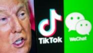 Trump bant TikTok vanaf zondag in de VS: zal de app nu doodbloeden? En wat met Belgische gebruikers?