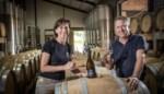 Vijf Limburgse wijndomeinen vallen in de prijzen in Brugge